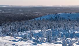 Keskitysmarssit Cold Response 2020 -harjoitukseen Norjaan